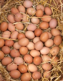 british-egg-week